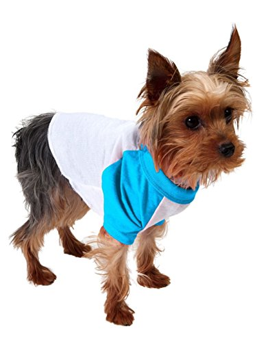 American Apparel Poly-Cotton 3/4 Sleeve Dog Raglan - White / Neon Heather Blue / S