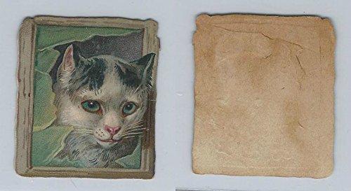 1890's Y95 Victorian Diecut, Animal Head, Cat, ZQL