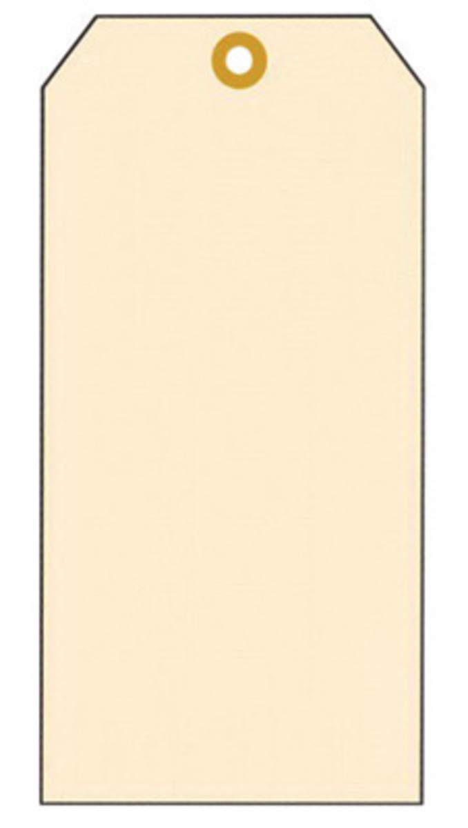 Accuform Signs 4 1/4'' X 2 1/8'' Beige 13-pt Manila Cardstock Blank Tag With 3/16'' Patch Reinforced Hole And 12'' Galvanized Wire (100 Per Pack)