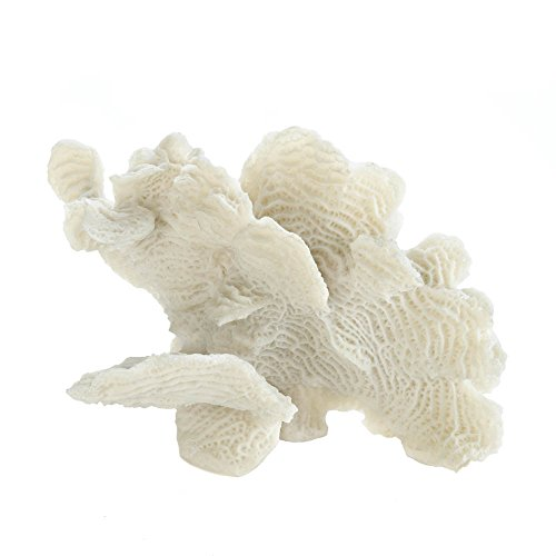 Accent Plus LARGE WHITE CORAL TABLETOP (Decor Coral)