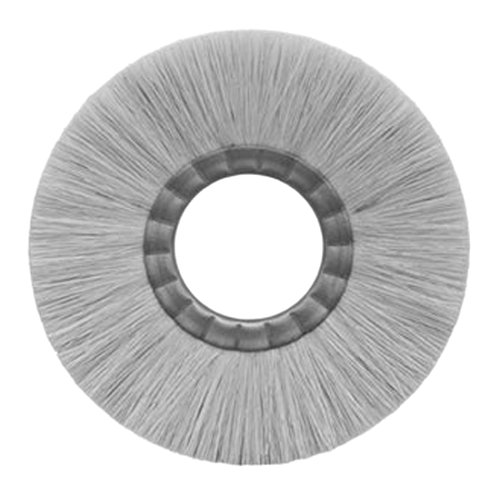Maryland Brush 40002 T104 10 x 7//8 x 4-1//4 AH 10 Untreated Tampico Brush