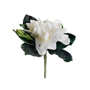 "5.5"" Gardenia Boutonniere White (Pack of 6) 66"