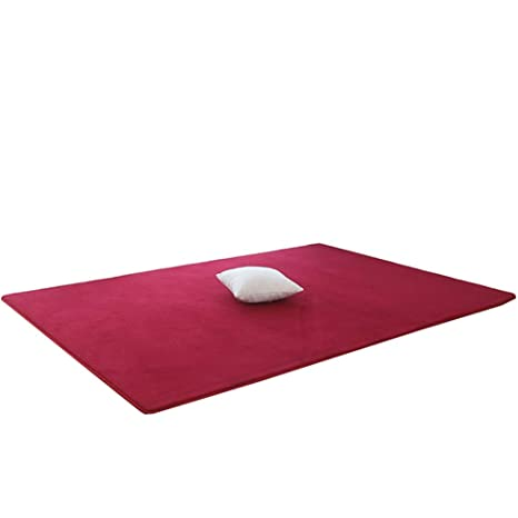 Amazon.com: Area Rug,Non-Slip Mat,Yoga Pad Soft Fluffy ...