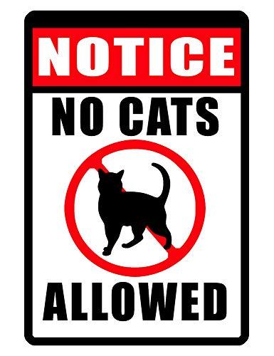 PotteLove No Cats Allowed Sign Durable Aluminum s Custom Cat Sign