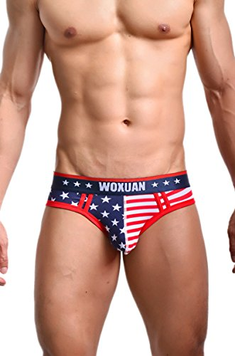 Evankin Men's Stretch Hip Bikini American Flag Design-L (American Underwear Men)