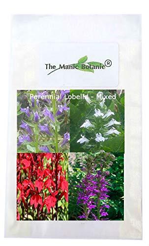 The Manic Botanic Hardy Perennial Seeds Colour Mix Of Perennial