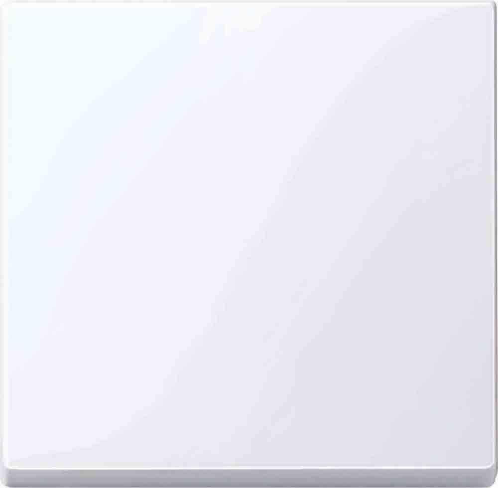 Merten 432525 Serienwippe System M Thermoplast brillant aktivweiß glänzend 440