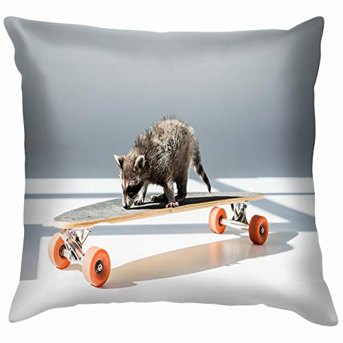 Funny Furry Raccoon Standing On Longboard Animals Wildlife Adorable Transportation Cotton Linen Home Decorative Throw Pillow Case Cushion Cover for Sofa Couch 26X26 Inch