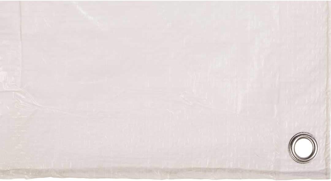Toldo reforzado gramaje 70 grs, 3 x 2 m, color blanco - Catral 560107