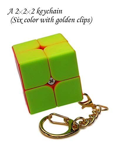 Aŭtuno Cubes, a 2x2x2 Cube of Keychains, Mini Keychain, 2x2 Cube, Puzzles, The Clip Keychain with Golden Colored Metals (Four Colour Without Stickers)