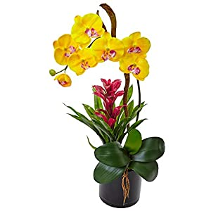 Nearly Natural Orchid and Bromeliad Silk Arrangement, Yellow 43