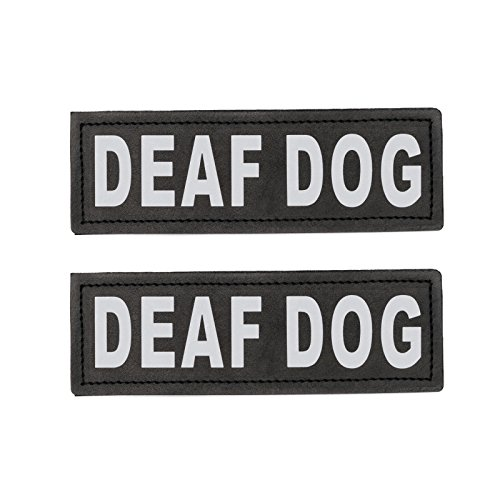 Hook Patches for Harness - Service Dog, Emotional Support, In Training, Service Dog In Training, and Therapy Dog Patches, by Industrial Puppy