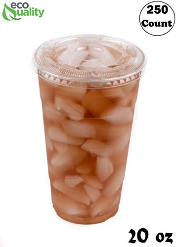 (Iced Coffee Go Cups and Lids   Cold Smoothie   Plastic Cups with Lids   20 oz Cups, 250 Pack   Clear Plastic Disposable Pet Cups   Ideal for Coffee, Parfait, Juice, Soda, Cocktail, Party Cups)