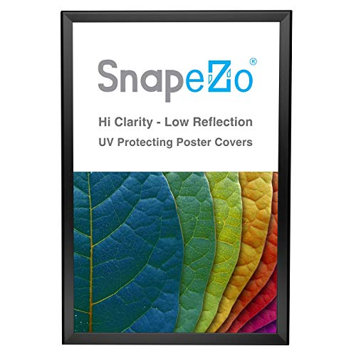 SnapeZo Poster Frame 20x30 Inches, Black 1.25 Inch Aluminum Profile, Front-Loading Snap Frame, Wall Mounting, Professional Series