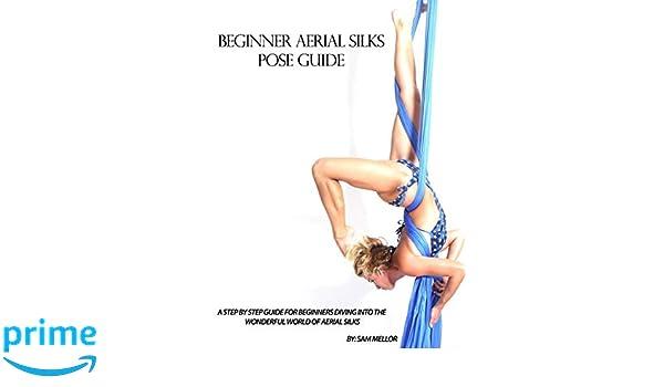Beginner Aerial Silks Pose Guide: Volume 1 The Aerial ...