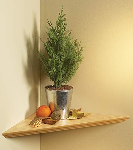 KV Kitchen & Bath Storage EZC 17/1 OK Oak Instant Corner Shelves Single Pack, 17