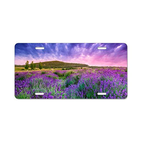 EXMENI Lavender Field Sky License Plate Frame Stainless Steel