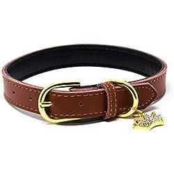 MASCRETTA Collar para Perro de Piel Sintetica. Collar para Mascota Unitalla. Disponible en Color Negro, Café, Rojo. (Café)