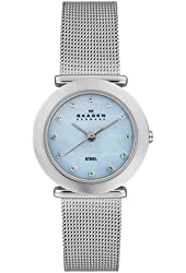 Skagen Women's 107SSSI1 Steel Collection Crystal Accented Mesh Stainless Steel Blue Dial Watch