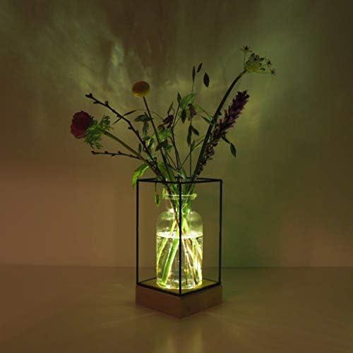 Gadgy® l Vaso vetro transparante con luce a led | stilo scandinavo con base in legno naturale e struttura in metallo | 22.5 x 10.8 x 10,8 cm