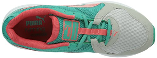 dubarry Wn's 01 v2 Damen Descendant Mehrfarbig pool Hallenschuhe Puma Tradewinds Green OqzEwE