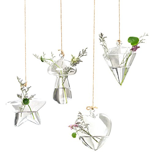 - WIWAPLEX Hanging Glass Terrariums, Pack of 4 Heart, Star, Mushroom, Diamond Shape Glass Hanging Hydroponic Vase for Indoor Plants House Ornaments, Courtyard or Veranda (3 Foot Hanging String Included)