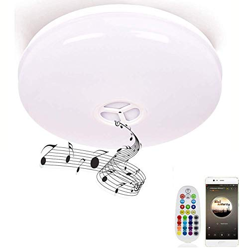 Smart Bathroom Light fixtures APP dimmable Ceiling Light Flush Mount with Bluetooth Speaker 1800lm 6500K 24W RGB Home Lighting Kitchen Lighting