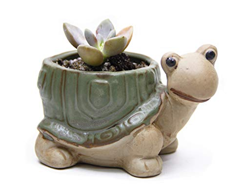 Goldblue Cute Animal Flower Pot Ceramic Succulent Pots Cactus Vase Flower Planter Pots (4.7Inch ()