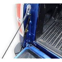 Dee Zee (DZ43204) Tailgate Assist Shock (Ford F150/2015- current models)