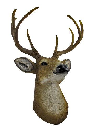 8 Point Buck Deer Head Bust Wall Hanging Buy Online In