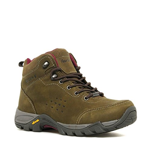 Women's Peter Walking Storm Boot Grizedale Mid PnPOIHx5qr