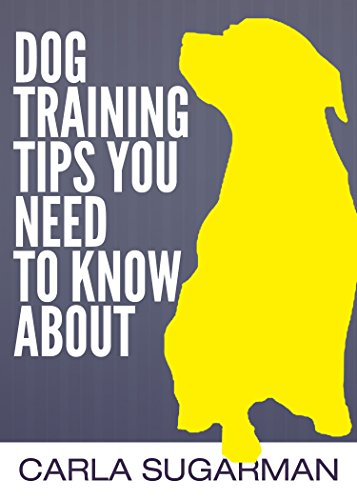 Dog Training Tips You Need To Know About