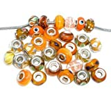 Ten (10) Pack of Assorted (Orange) Glass Lampwork Beads for Snake Chain Charm Bracelets