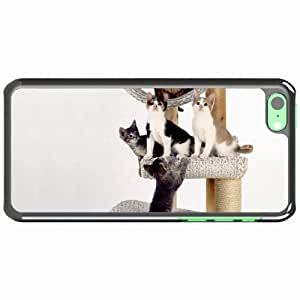 iPhone 5C Black Hardshell Case kittens scratching post climbing cats Desin Images Protector Back Cover
