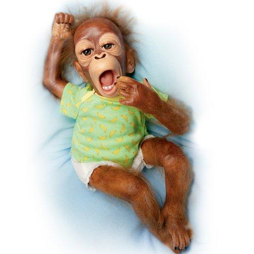 Baby Orangutan Doll: Baby Zula by Ashton Drake (Ashton Drake Dolls Lauren)
