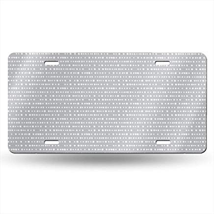 Modern Dino Dotty Stripe On Sidewalk Grey Funny License Plate Frame Cover,Metal Front License Plate Decorative,Vanity Tag,Novelty Gifts for Women,for Men