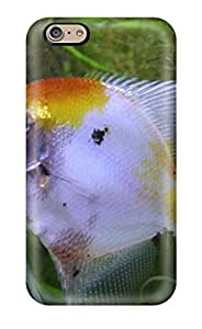 Awesome Design Freshwater Angelfish Hard Case Cover For Iphone 6