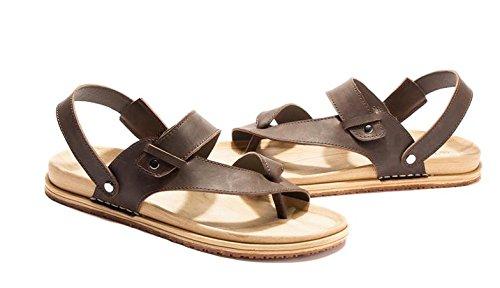 JiZhi Uomo scarpe / estate antisdrucciolevole sandali / ciabatte / infradito / clip piedi traspirante / scarpe da spiaggia / casuali tallone piano / Walking , dark brown , 42