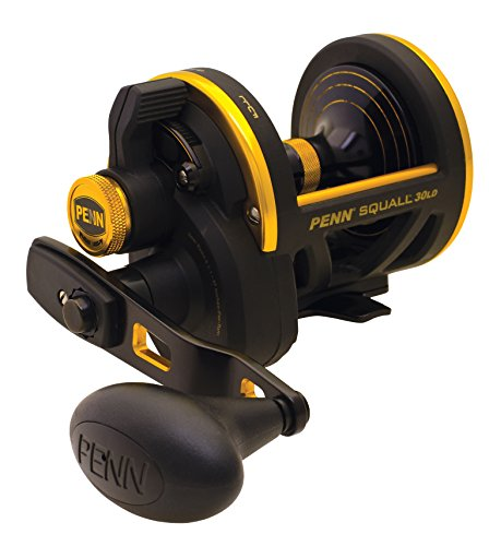 Penn 1206096 Squall SQL60LD Lever Drag Conventional Fishing Reel