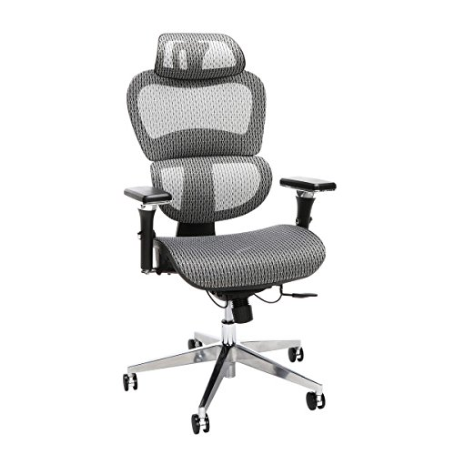 OFM Model 540-GRY Core Collection Ergo Mesh Office Chair with Head Rest for Computer Desk, Gray