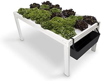 Mesa de cultivo hidropónico Minicamp: Amazon.es: Jardín