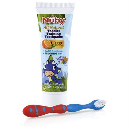 Nuby Toddler Training Toothpaste Toothbrush
