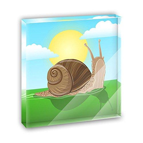 (Pokey Snail Acrylic Office Mini Desk Plaque Ornament Paperweight)