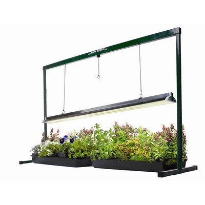 41y5hZcLAVL Jump Start Greenhouse