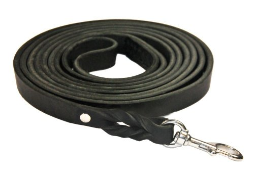 Dean and Tyler Braided Track Dog Leash, Black 40-Feet by 3/4-Inch Width with Handle And Stainless Steel Hardware