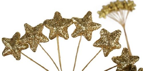 Gold Glitter Star Shaped Picks for Christmas Holiday Florals & More - 144 Picks (6 Packages of 24)