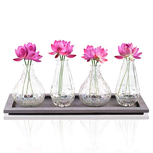 Bud Flower Vases in Wooden Tray Set - 4-Piece Assorted Iridescent Finish Glass Vases in Caddy Home Decor Set for Windowsill Accessory, Decorative Buffet Display, Party or Wedding Centerpiece ()