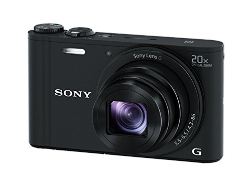 Sony DSCWX350 18 MP Digital Camera (Black) B/w Low Light Camera
