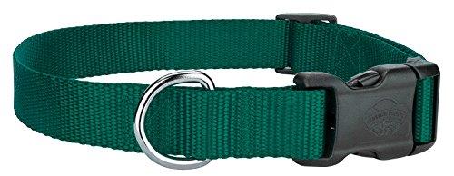 Top Dog Nylon Collar (Country Brook DesignDeluxe Nylon Dog Collar - Green - Medium)