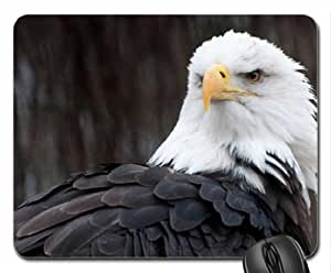 Eagle Mouse Pad, Mousepad (Birds Mouse Pad)
